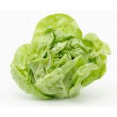 Saláták, levélzöldségek