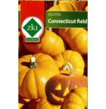 Connecticut field (Halloween tök)