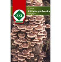 Shi-take gomba