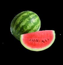 LENTUS F1 korai crimson görögdinnye 1000 szem