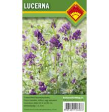 Lucerna vetőmag 500 g