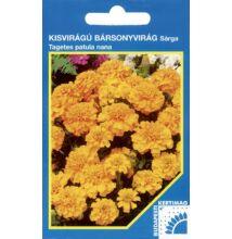 Bársonyvirág kisvirágú Citromsárga