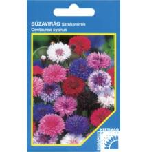 Búzavirág színkeverék