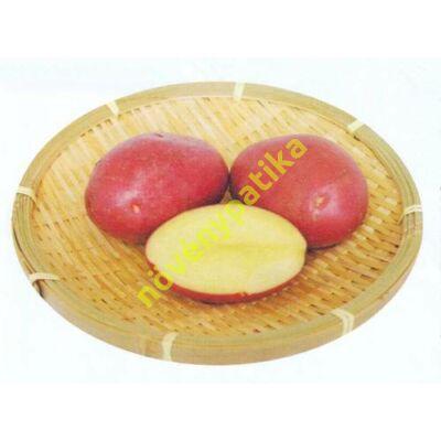 Katica burgonya minigumó 100 db