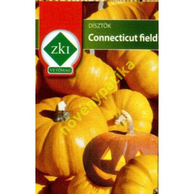 Connecticut field (Halloween tök)