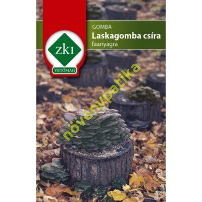 Laskagomba