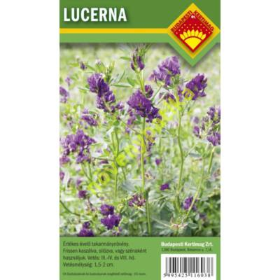 Lucerna vetőmag 1 kg