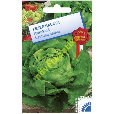 Attrakció saláta