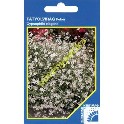 Fátyolvirág egynyári - Gypsophila fehér