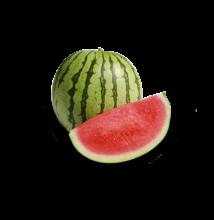 DÁVID F1 magnélküli görögdinnye 1000 szem