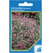 Fátyolvirág egynyári - Gypsophila rózsaszín