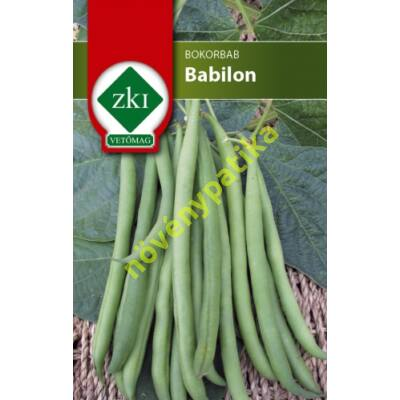 Babilon bab