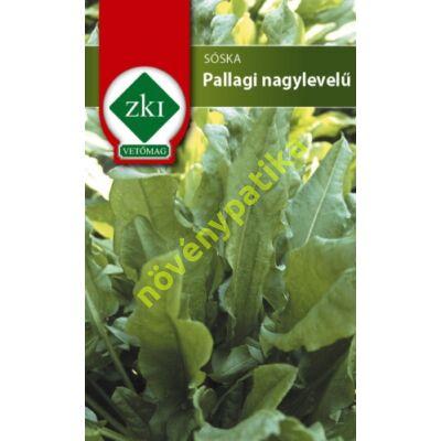 Pallagi nagylevelű sóska