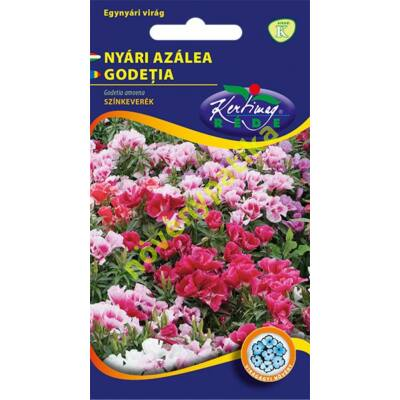 Egynyári azelea - Godetia