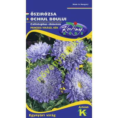 Őszirózsa Prinzess lila