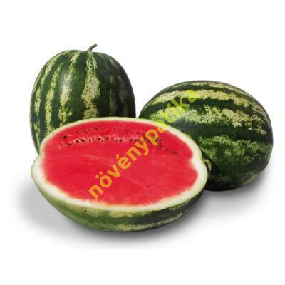 CHARISMA F1 görögdinnye 1000 szem