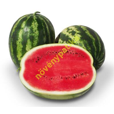 STABILO F1 görögdinnye 1000 szem