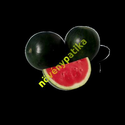 ZKI 10920 F1 magnélküli görögdinnye 1000 szem
