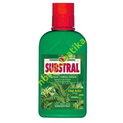 Substral tápoldat zöld növényekhez és páfrányokhoz 500 ml