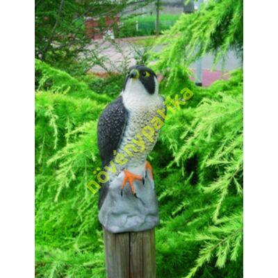 Dekor Carolina kacsa